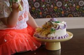 Cake Smash 11