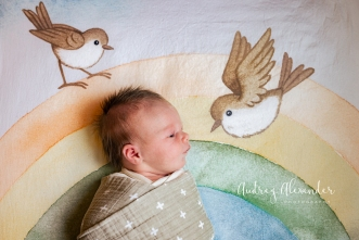 Newborn Photographer Dunwoody Roswell Marietta Audrey Alexander Photography-2